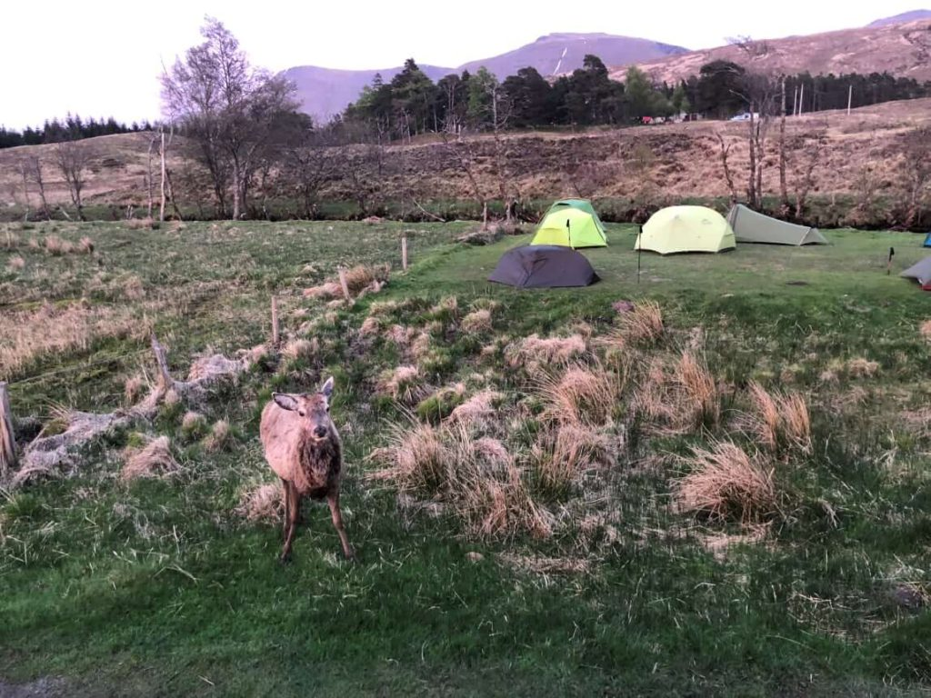 West Highland Way - Camping Inveroran Hotel