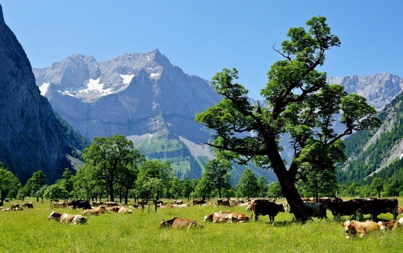 Ahornboden, Karwendel in Tirol