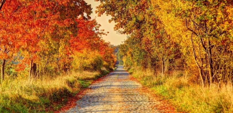 Herbstwanderungen in Österreich