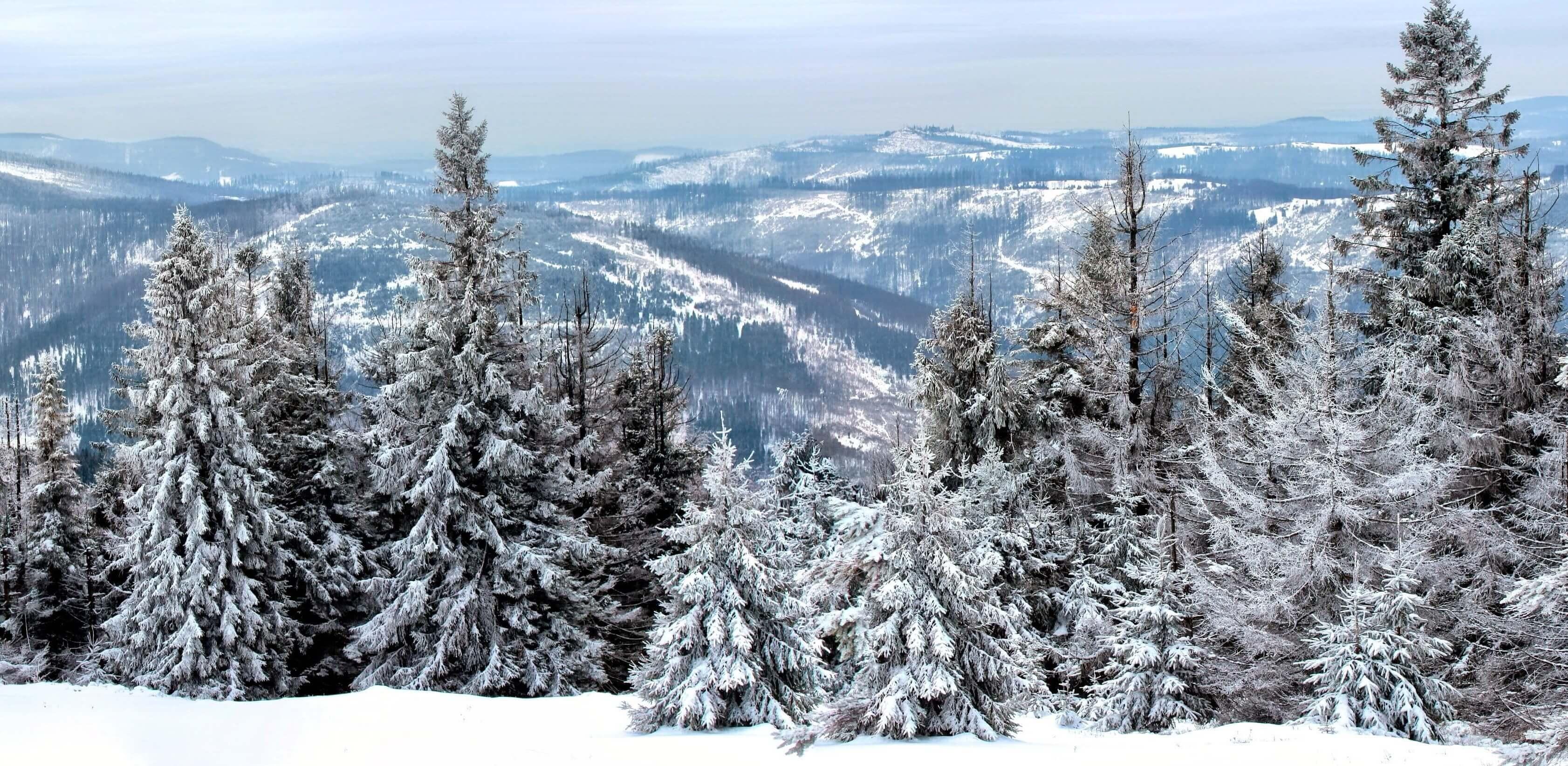 Tipps zum Wandern mit Schneeschuhen