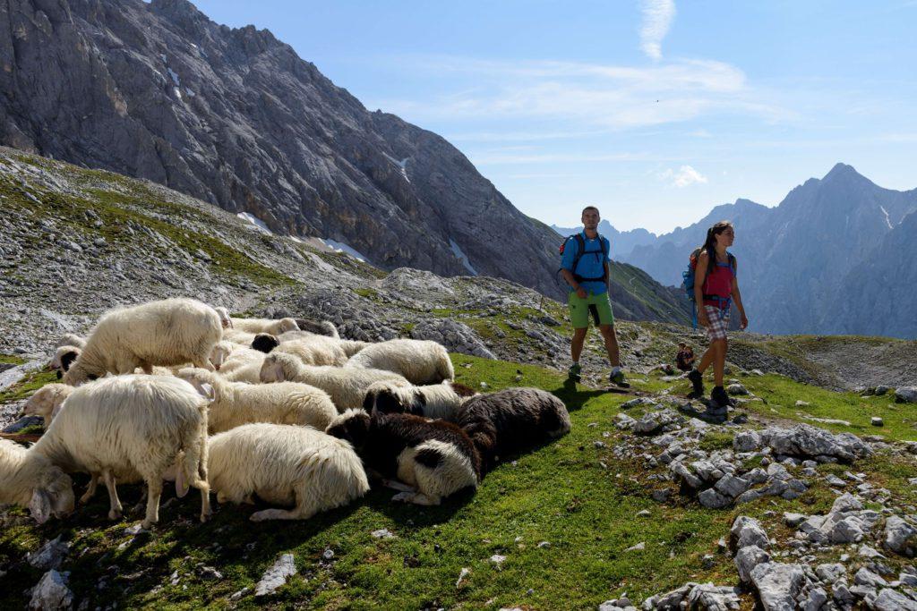 Hüttenwanderung Wettersteinrunde Deutschland